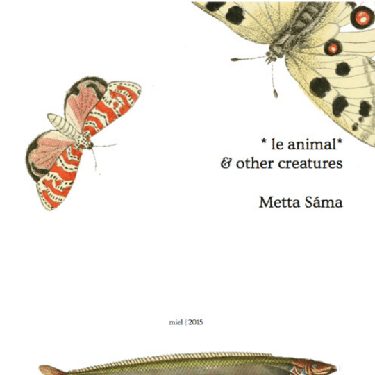 LE ANIMAL & OTHER CREATURES: